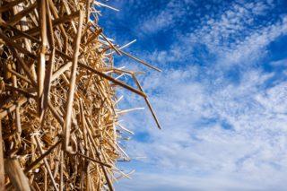 Cinq questions pour comprendre la construction en paille
